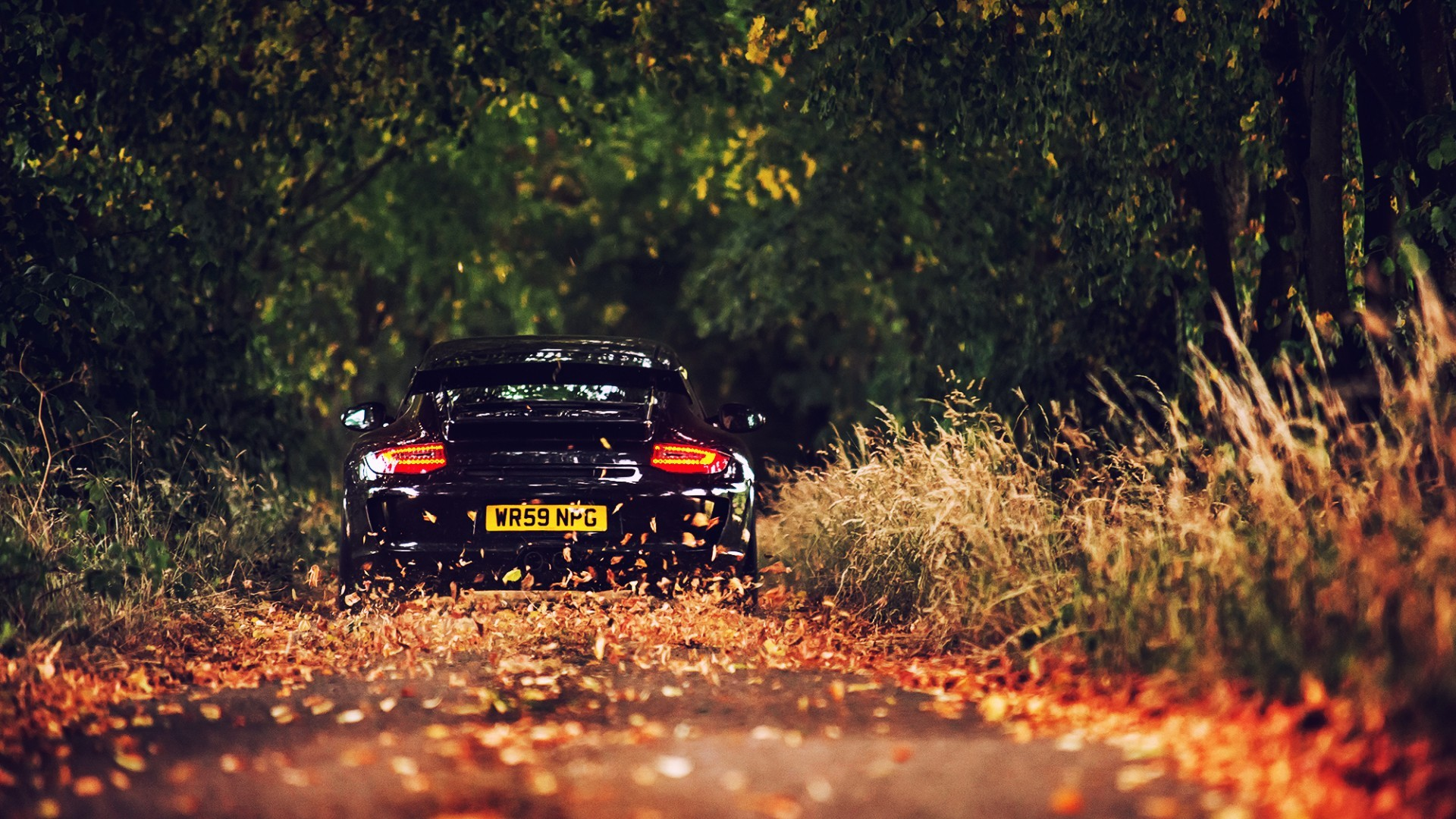 113 porsche 911 hd wallpapers | background images - wallpaper abyss