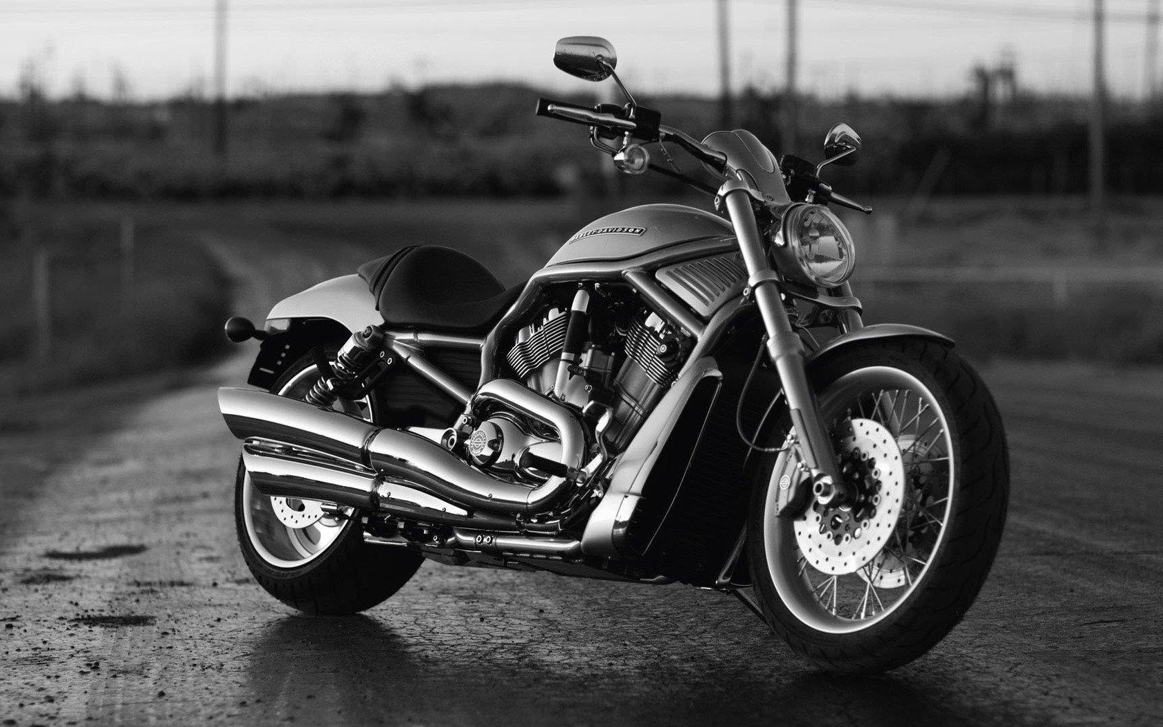 Harley Davidson V Rod Bakgrund And Bakgrund 1680x1050 Id