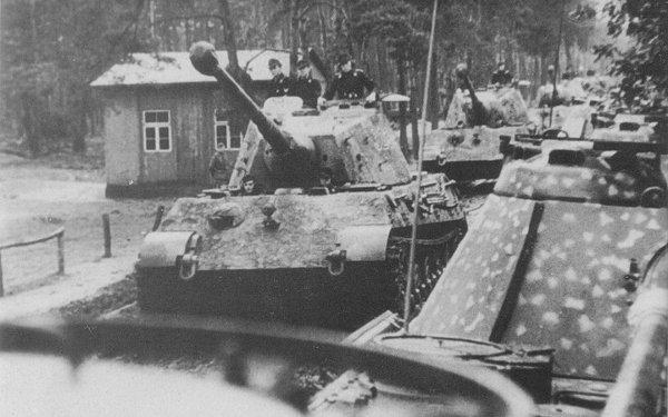 Military Tiger II Tanks World War II HD Wallpaper | Background Image
