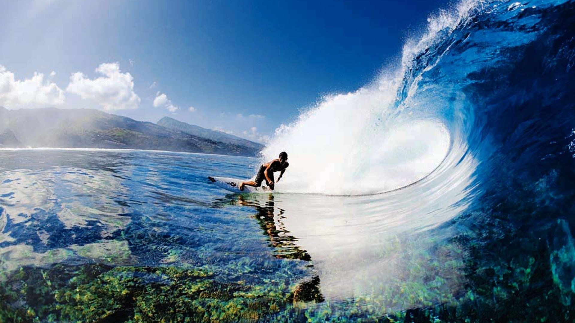 203 Surfing Hd Wallpapers Background Images Wallpaper Abyss