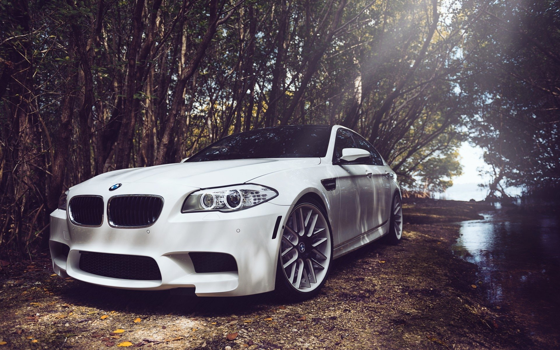 106 Bmw M5 Hd Wallpapers Background Images Wallpaper Abyss