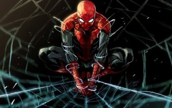 Comics - Spider-Man Wallpapers and Backgrounds ID : 434780