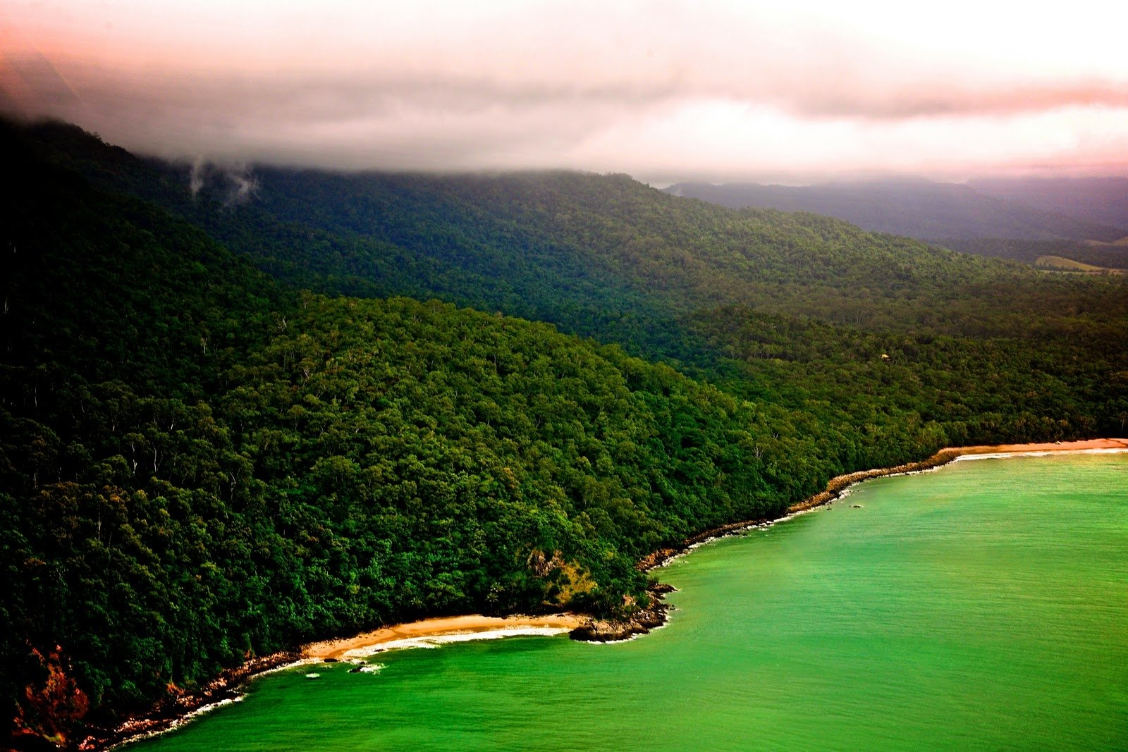 6 Daintree Rainforest HD Wallpapers