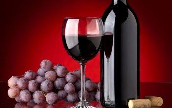 Alimento - Wine Wallpapers and Backgrounds ID : 439092