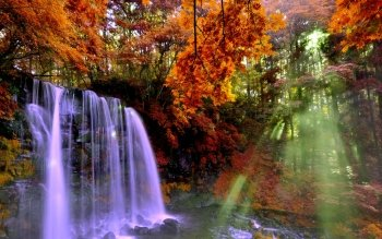 Earth - Waterfall Wallpapers and Backgrounds ID : 439296