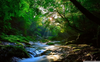 Earth - Stream Wallpapers and Backgrounds ID : 439334