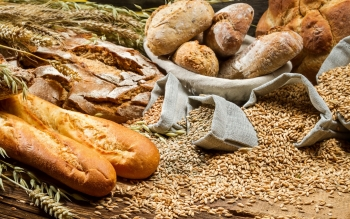 Food - Bread Wallpapers and Backgrounds ID : 441573