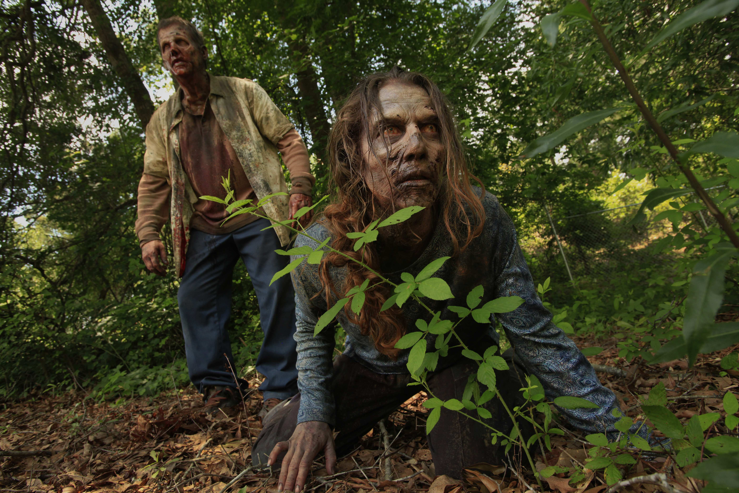 TV Show The Walking Dead Zombie Wallpaper