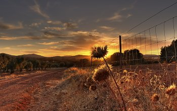 Man Made - Fence Wallpapers and Backgrounds ID : 452346