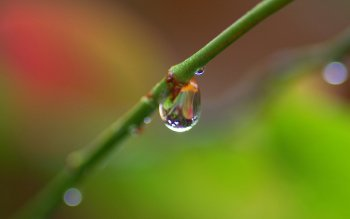 Earth - Water Drop Wallpapers and Backgrounds ID : 452355