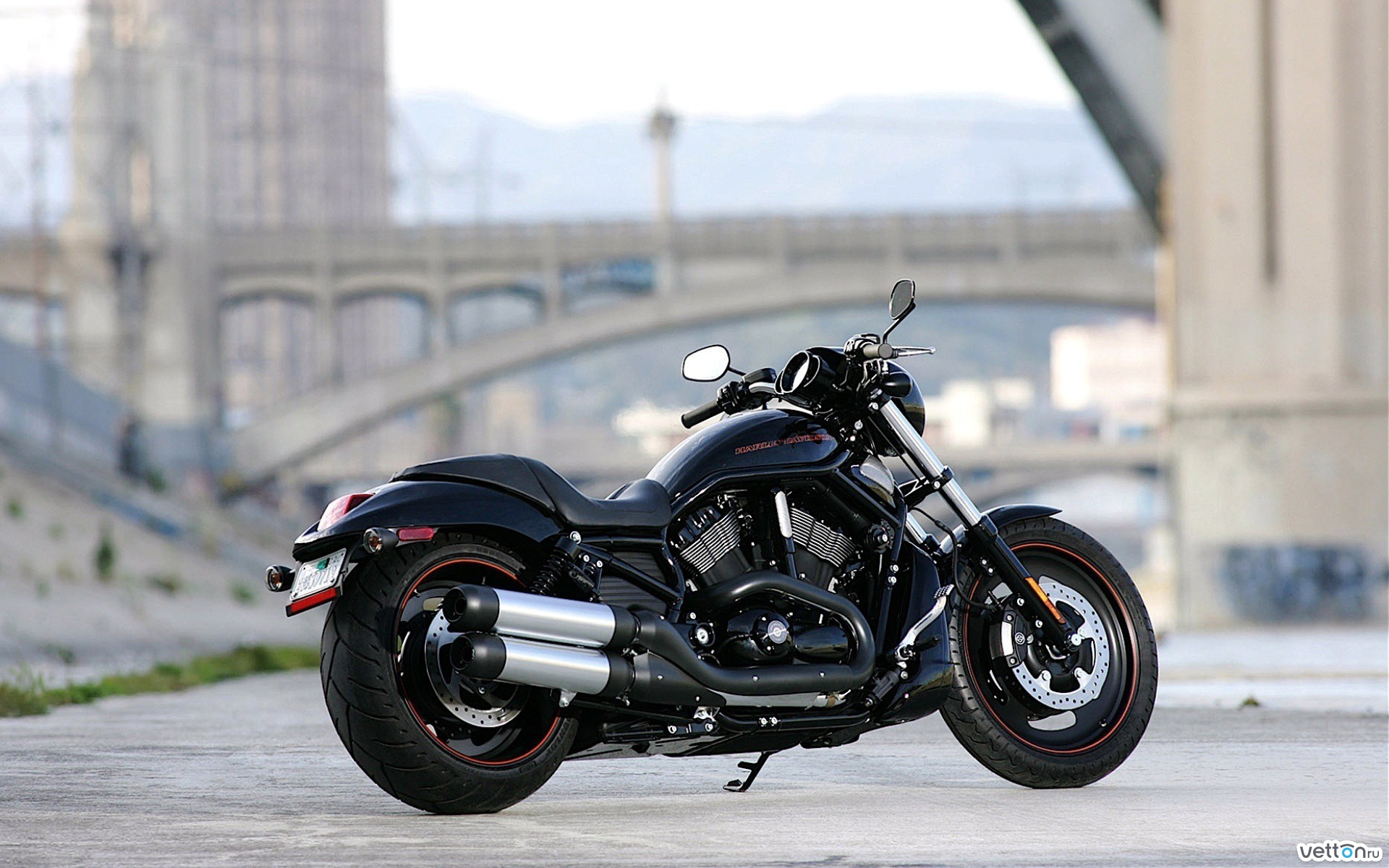 Harley Davidson Night Rod Papel De Parede Hd Plano De Fundo 1920x1200 Id 463959 Wallpaper Abyss