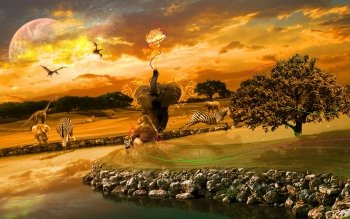Fantasy - Animal Wallpapers and Backgrounds ID : 464207