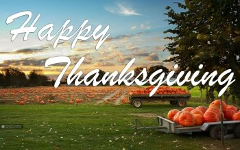 Holiday - Thanksgiving Wallpapers and Backgrounds ID : 465169