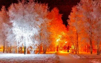 Tierra - Winter Wallpapers and Backgrounds ID : 466472