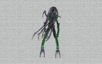 HD Wallpaper | Background ID:468025