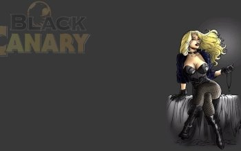 Comics - Black Canary Wallpapers and Backgrounds ID : 478742