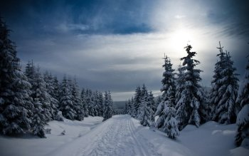Fotografie - Winter Wallpapers and Backgrounds ID : 480620