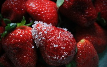Alimento - Strawberry Wallpapers and Backgrounds ID : 480806