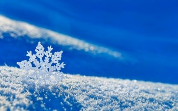 Photography - Winter Wallpapers and Backgrounds ID : 482570
