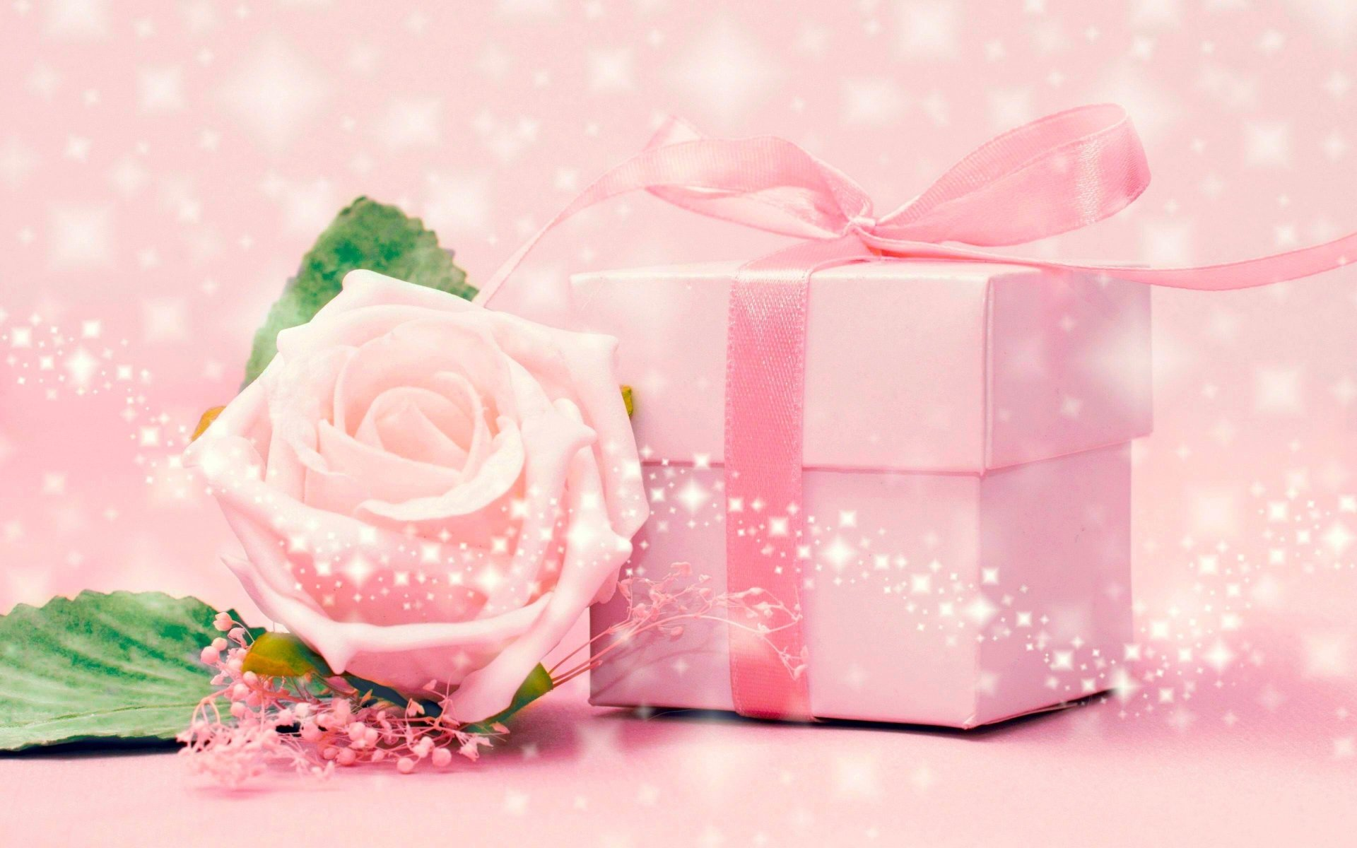 Misc - Gift  Nature Pink Flower Wallpaper