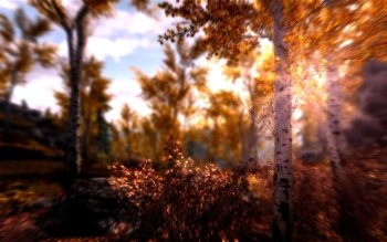 Video Game - Skyrim Wallpapers and Backgrounds ID : 486025