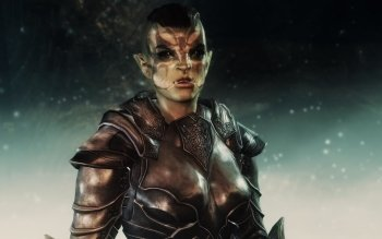 Video Game - Skyrim Wallpapers and Backgrounds ID : 488791
