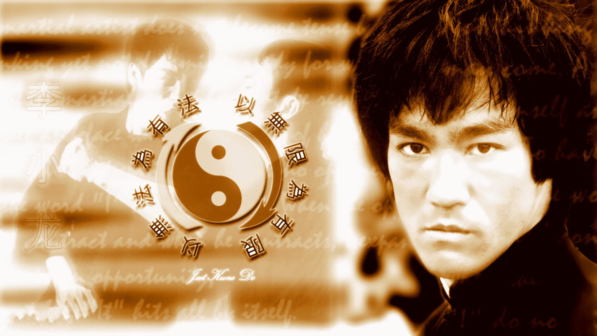 Bruce Lee Hd Wallpaper Background Image 1920x1080 Id 493872