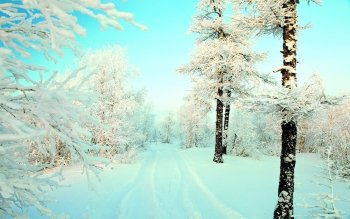 Earth - Winter Wallpapers and Backgrounds ID : 496975