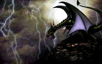 Fantasy - Dragon Wallpapers and Backgrounds ID : 497501