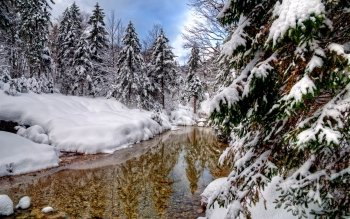 Earth - Winter Wallpapers and Backgrounds ID : 498997