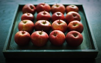 Food - Apple Wallpapers and Backgrounds ID : 499236
