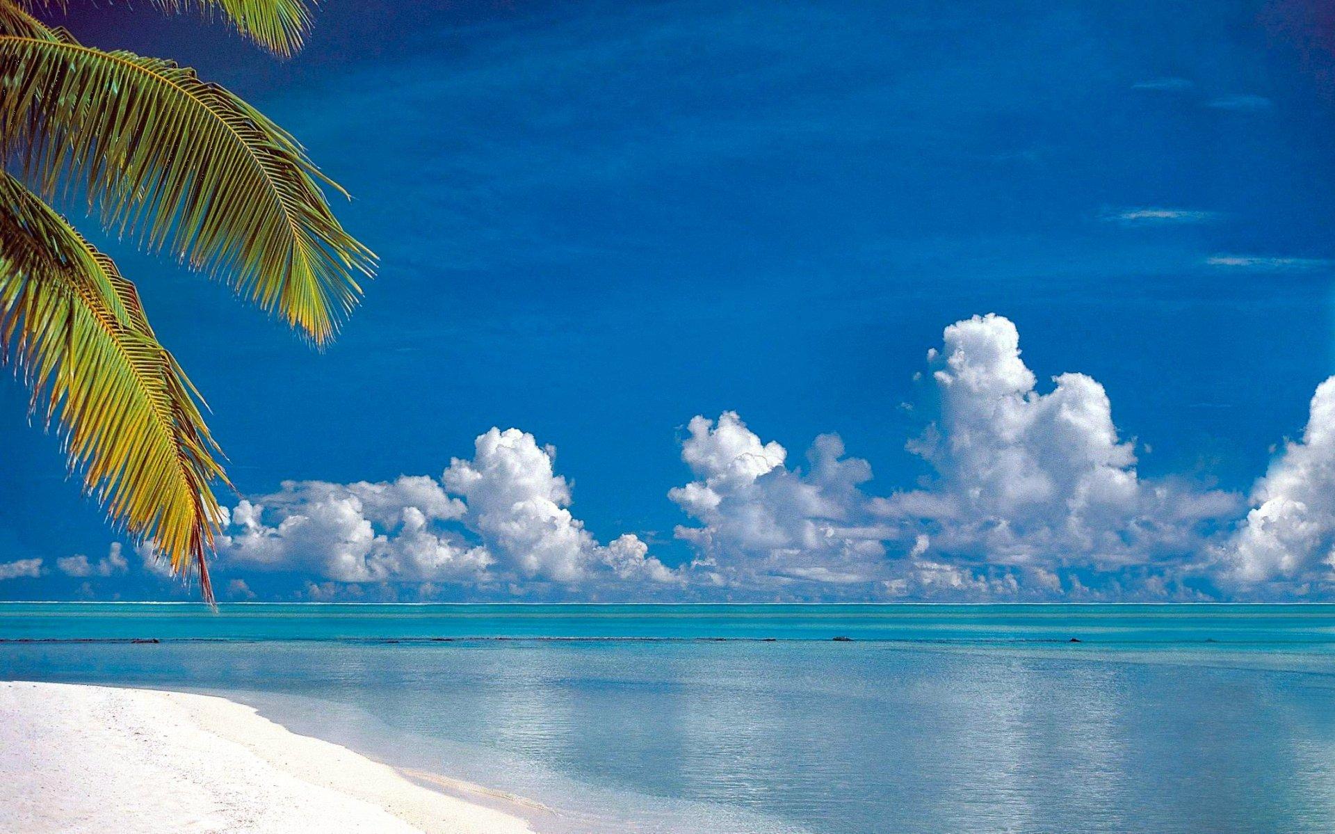 Earth - Tropical  Ocean Blue Sky Cloud Turquoise Beach Horizon Reflection Palm Tree Summer Wallpaper