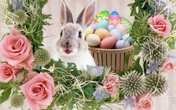 Holiday - Easter Wallpapers and Backgrounds ID : 501726