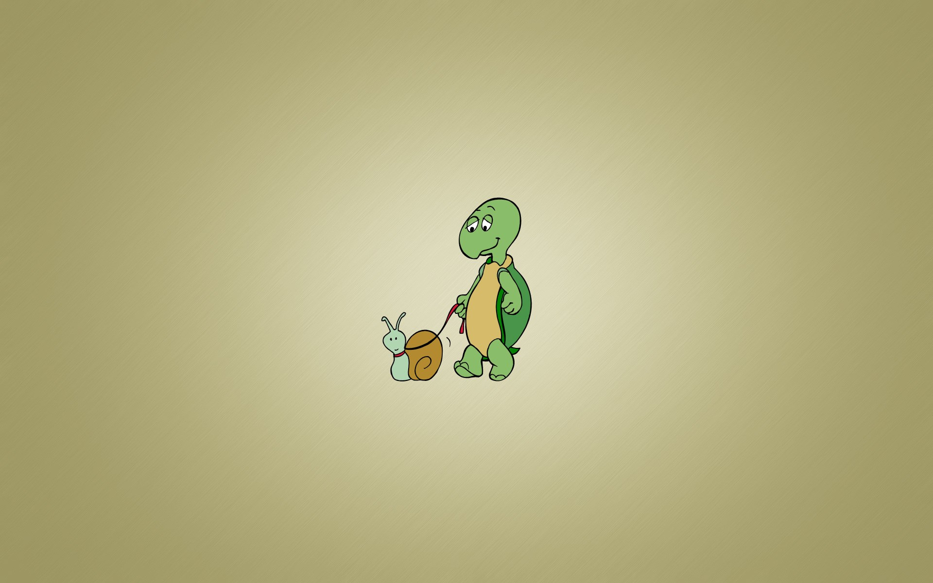 Funny 3d Animal Turtle Wallpapers Hd: Turtle HD Wallpaper