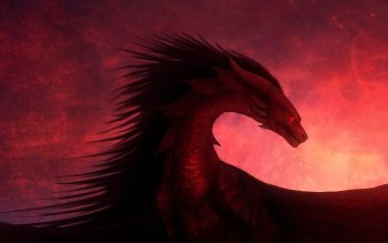Fantasy - Dragon Wallpapers and Backgrounds ID : 522934