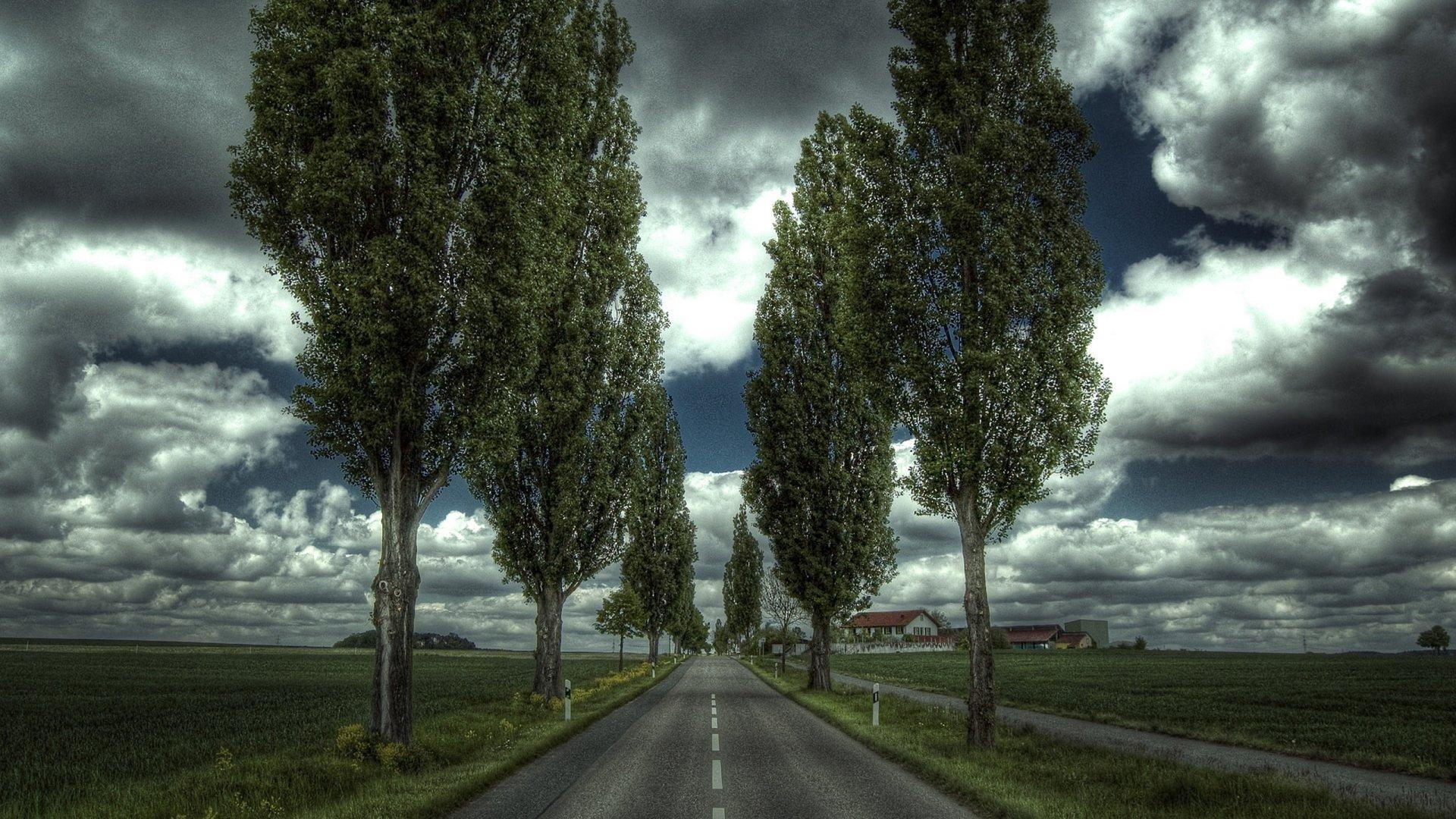 2560x1440 wallpaper road: Road HD Wallpaper
