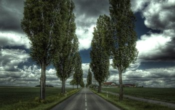 Man Made - Road Wallpapers and Backgrounds ID : 523749