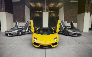 Vehicles - Lamborghini Adventador Wallpapers and Backgrounds ID : 524783
