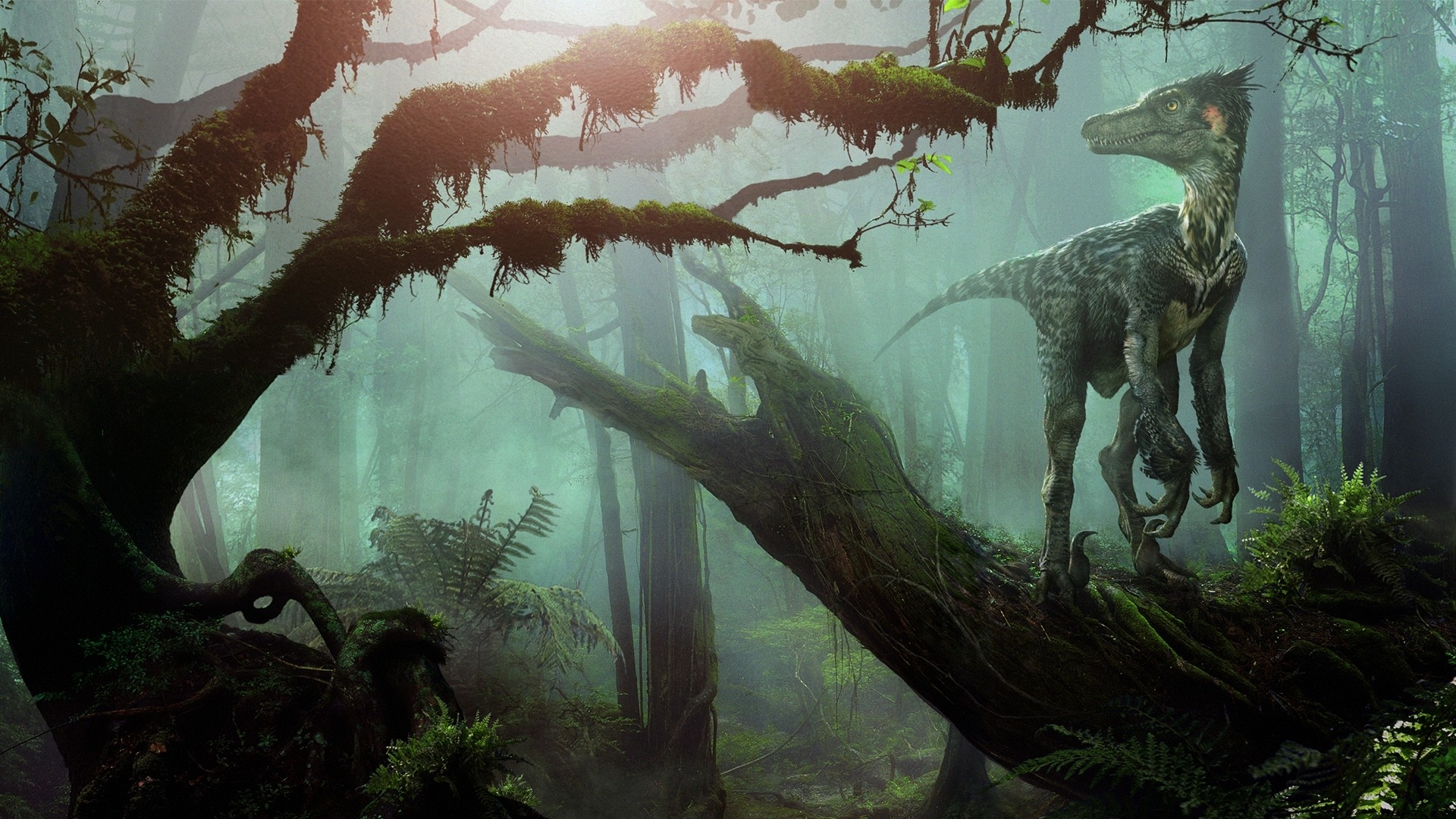 dinosaur full hd wallpaper and background image