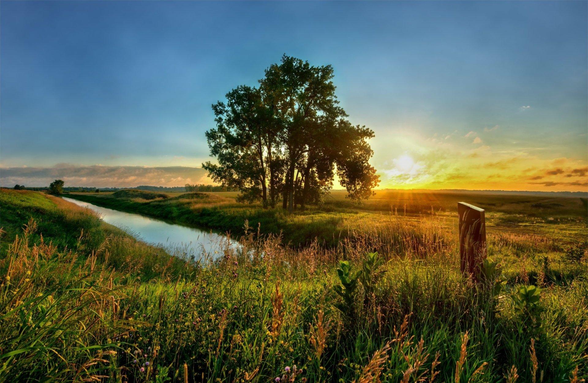 Earth - Sunrise  Tree Stream Field Wallpaper