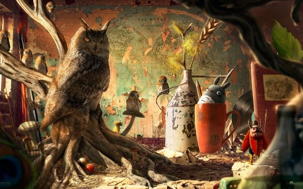 Artistic Desktopography Animal Owl Bird HD Wallpaper   Background Image