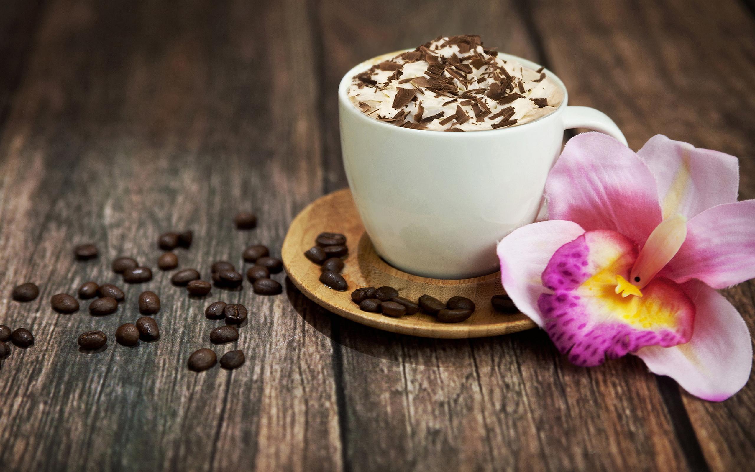 Cappuccino hd wallpaper sfondi 2560x1600 id 553522 wallpaper abyss - Bilder cappuccino ...