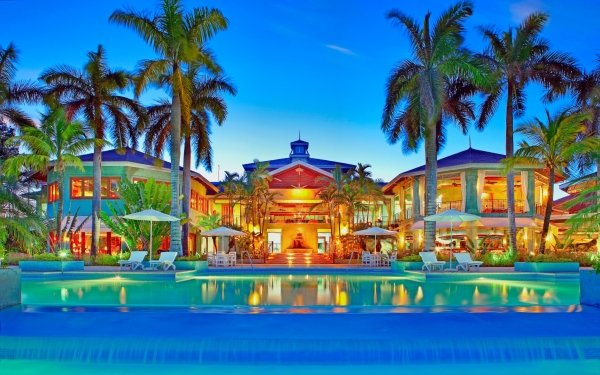 Man Made Pool Tropical Palm Tree Caribbean Summer HD Wallpaper | Background Image