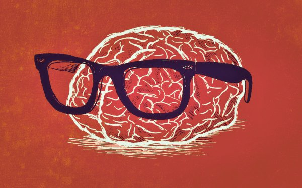Humor Nerd Brain Weird orange HD Wallpaper   Background Image
