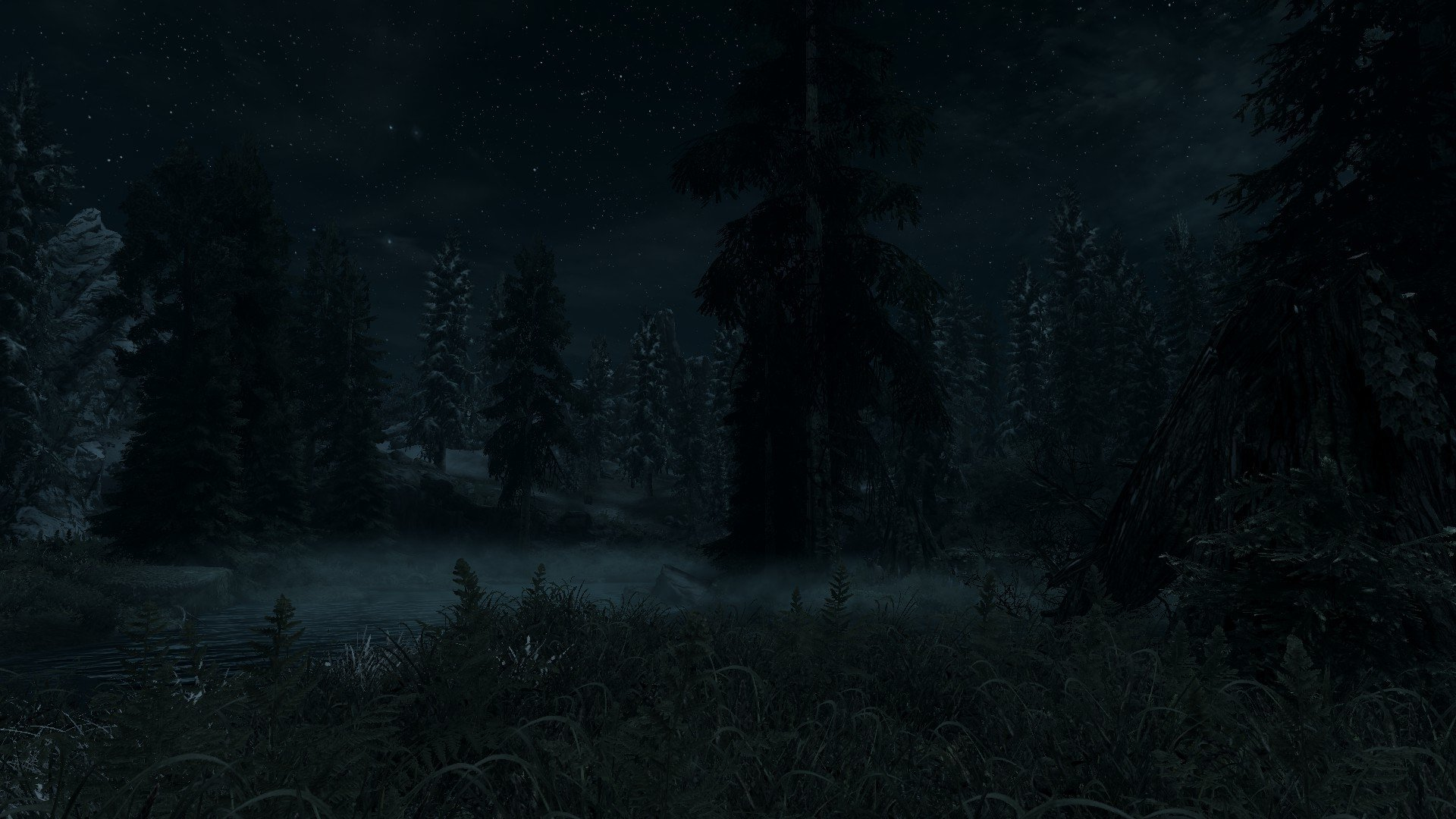 dark forest full hd wallpaper and background 1920x1080
