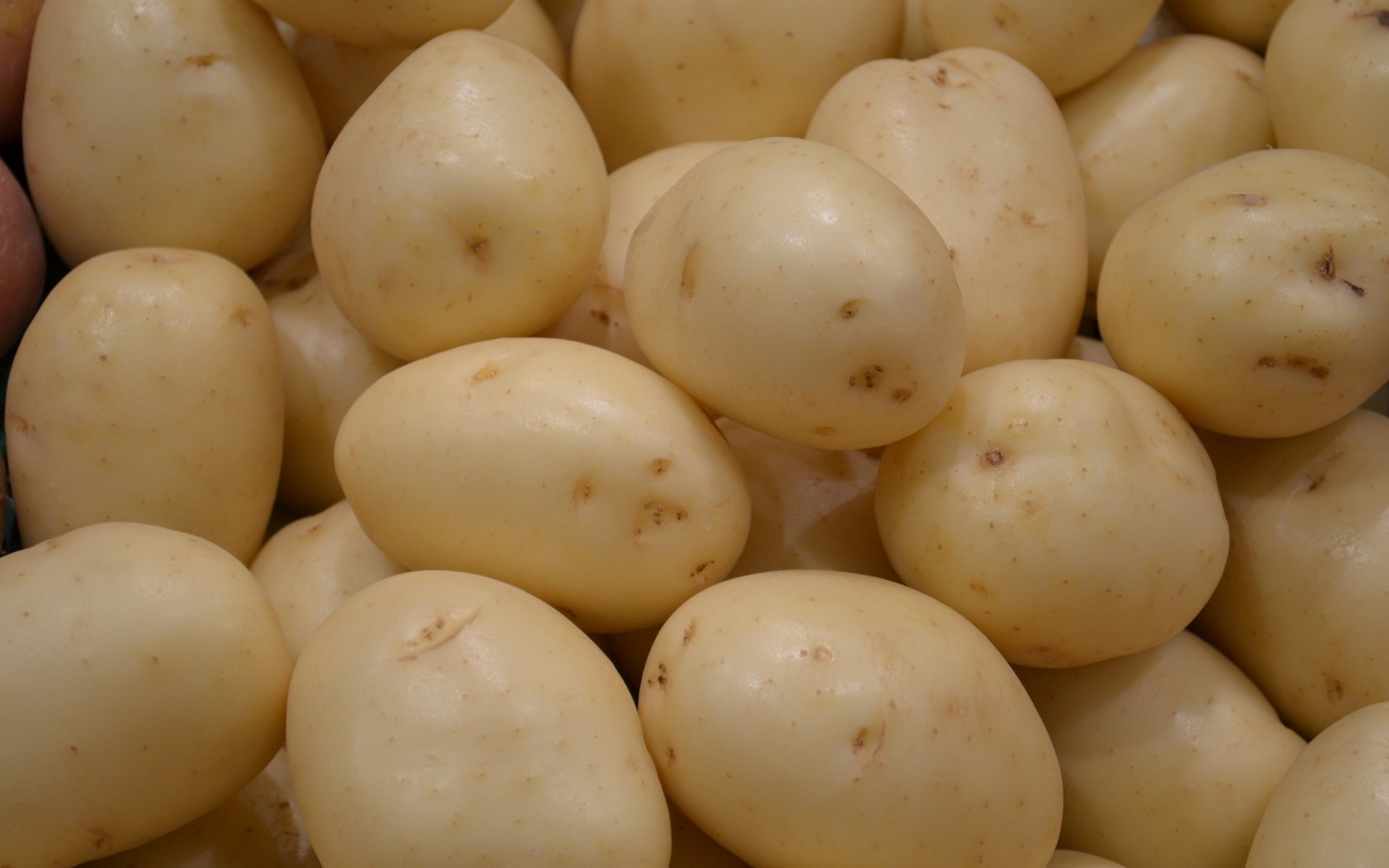 potato potatoes vegetable wallpapers alphacoders