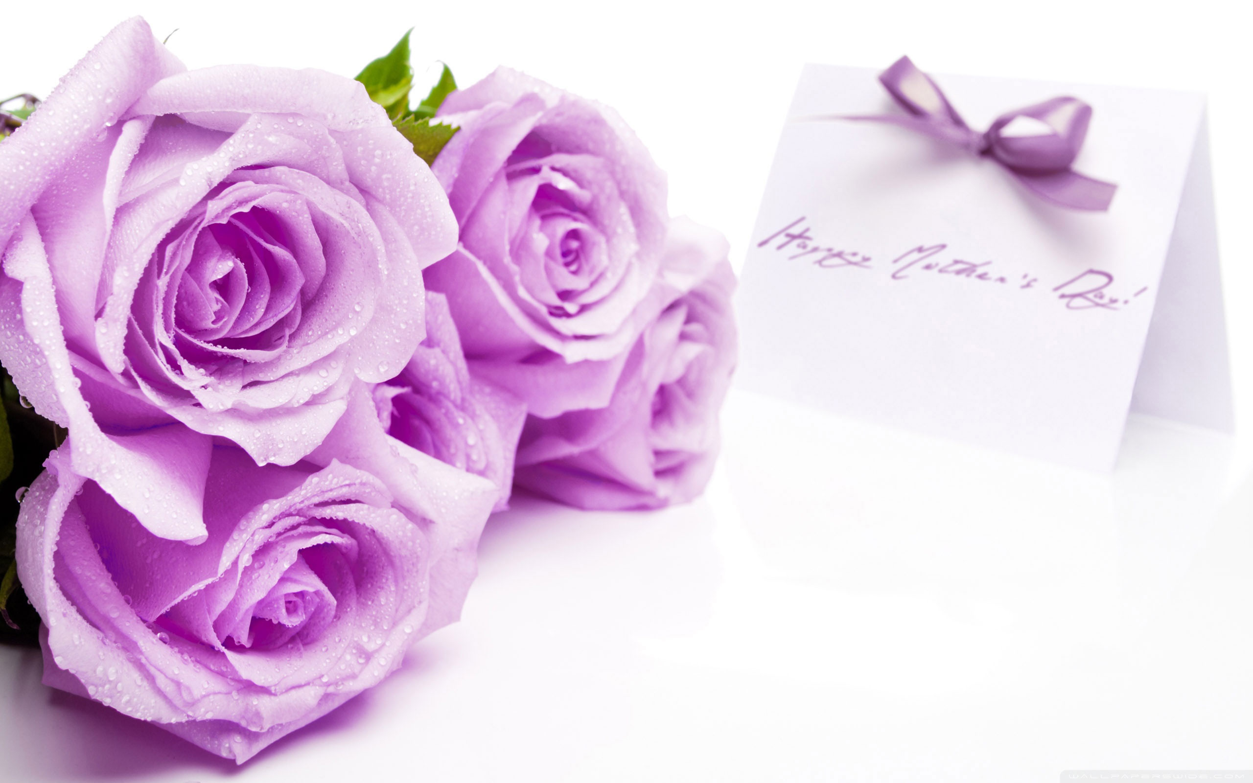 mother s day hd wallpaper background image 2560x1600 id 595352