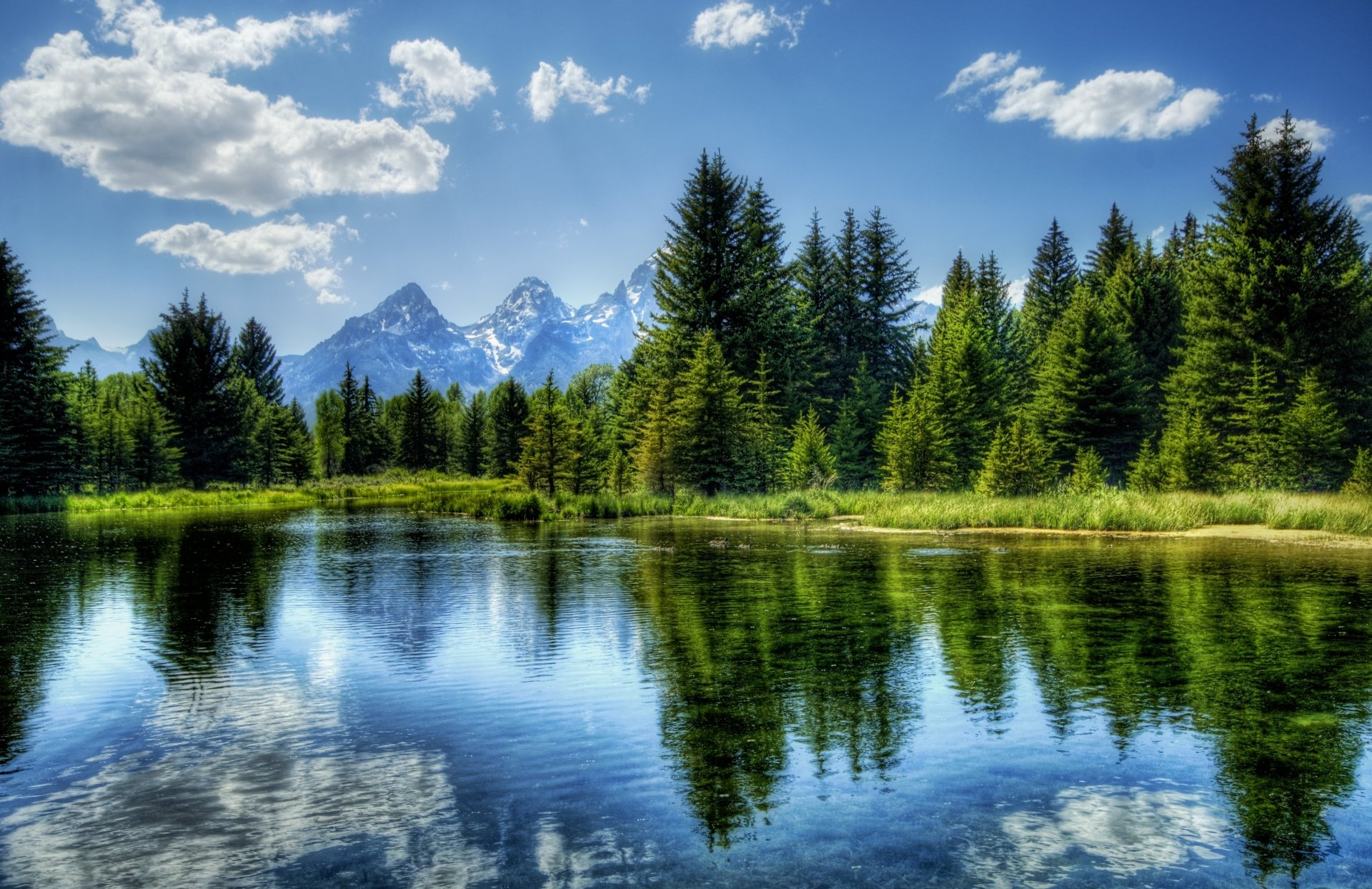 Earth - Landscape  Tree Reflection Lake Water Cloud Mountain Yellowstone Wyoming The Teton Range Grand Teton National Park Earth Wallpaper