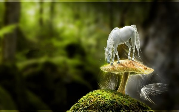 HD Wallpaper | Background Image ID:597453