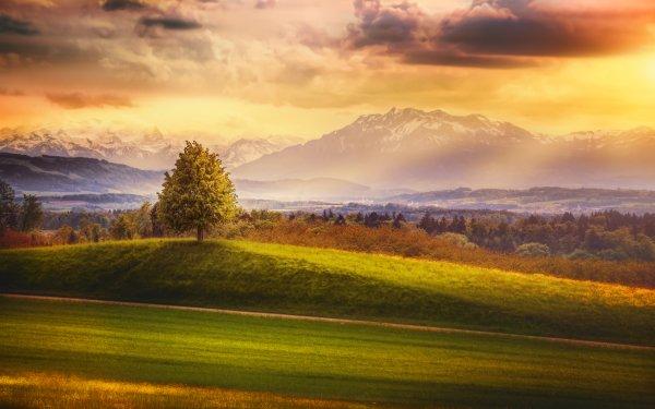 Earth Landscape Mountain Alps Evening Sunset Glow Tree Switzerland Cloud HD Wallpaper | Background Image